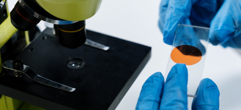 Scientist looks at microscope specimen.